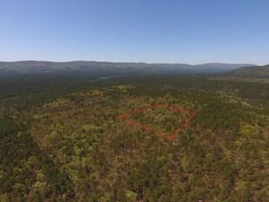 BLUE MOUNTAIN RECREATIONAL RETREAT ADJOINING NATIONAL FOREST