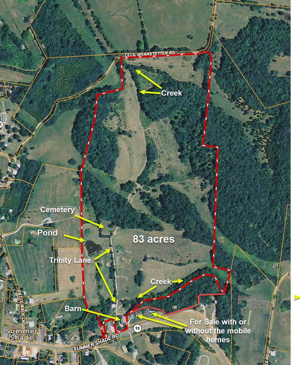 Farm, Fenced & Cross-Fenced, 2 Creeks, 2 Springs, Kentucky