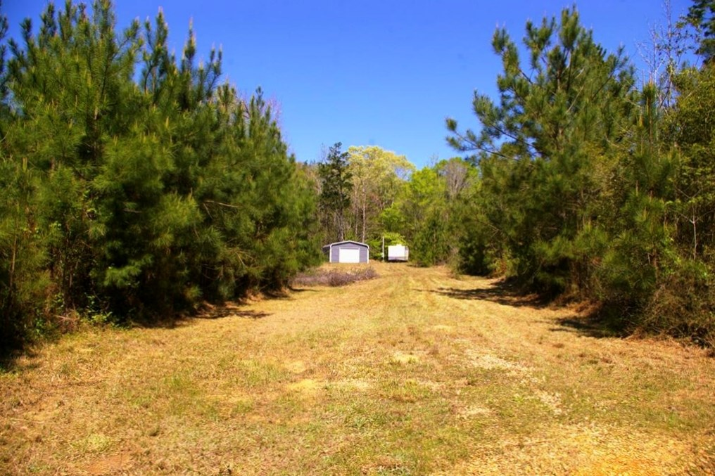 8.6 acre Land for Sale Home/Camp Site, Franklin County, MS