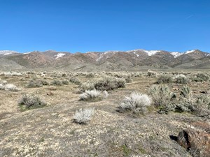 RESIDENTIAL LOT MINUTES AWAY FROM STATE RECREATION AREA