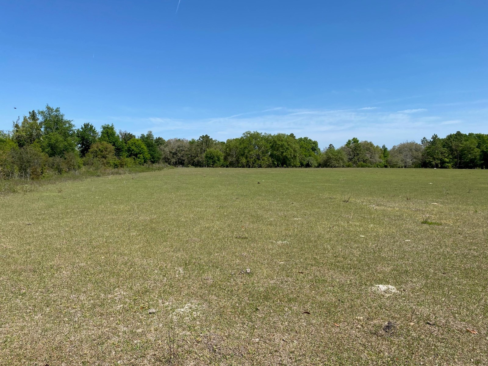 24+/- ACRE FARM FOR ONLY $120,000!!