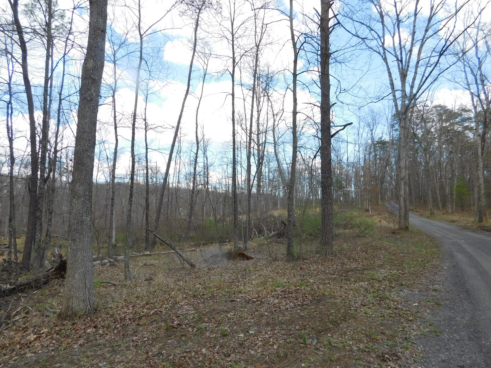 Acres in Green Ridge State Forest