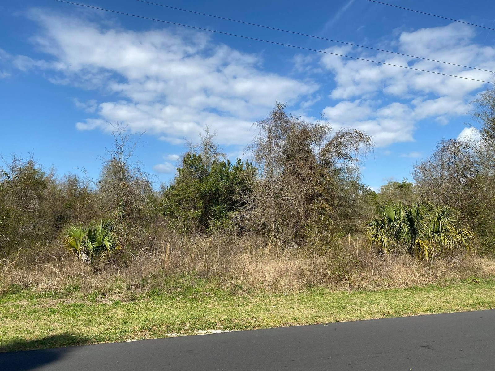 LAND FOR SALE IN TOWN!