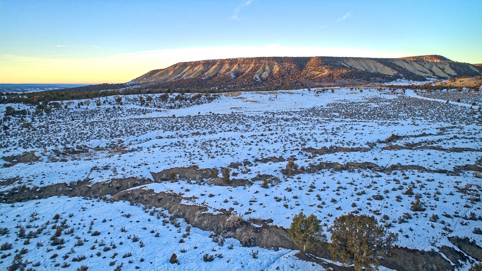 42 acres in Montrose, CO with mountain views.