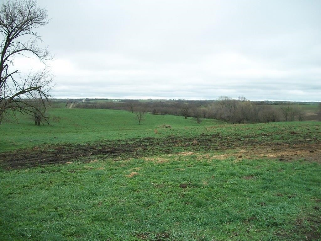 Great Combination Farm with Tillable & Pasture, Redding, IA