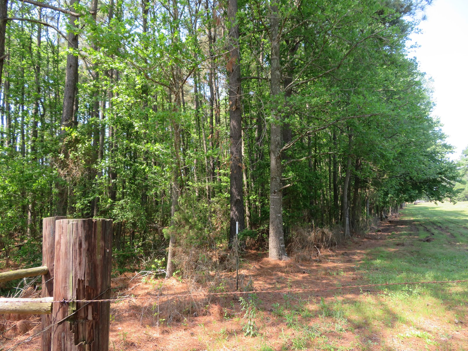 Country Homesite for sale in East Texas