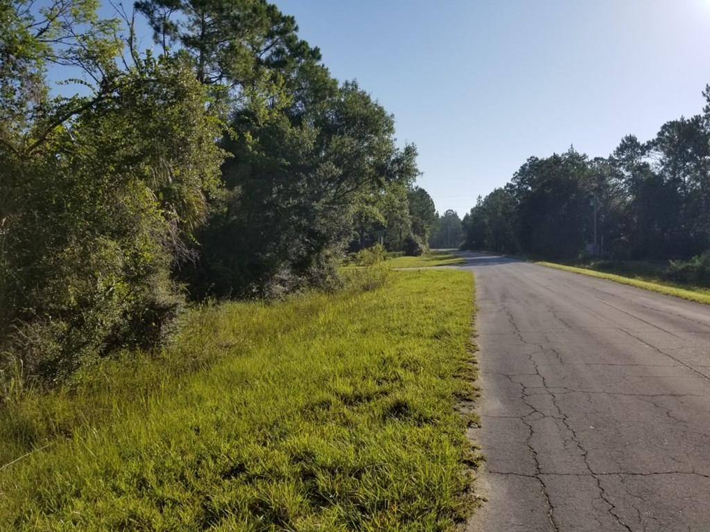 VACANT LOT WITH BRAND NEW IMPROVEMENTS ! - DIXIE COUNTY FL!