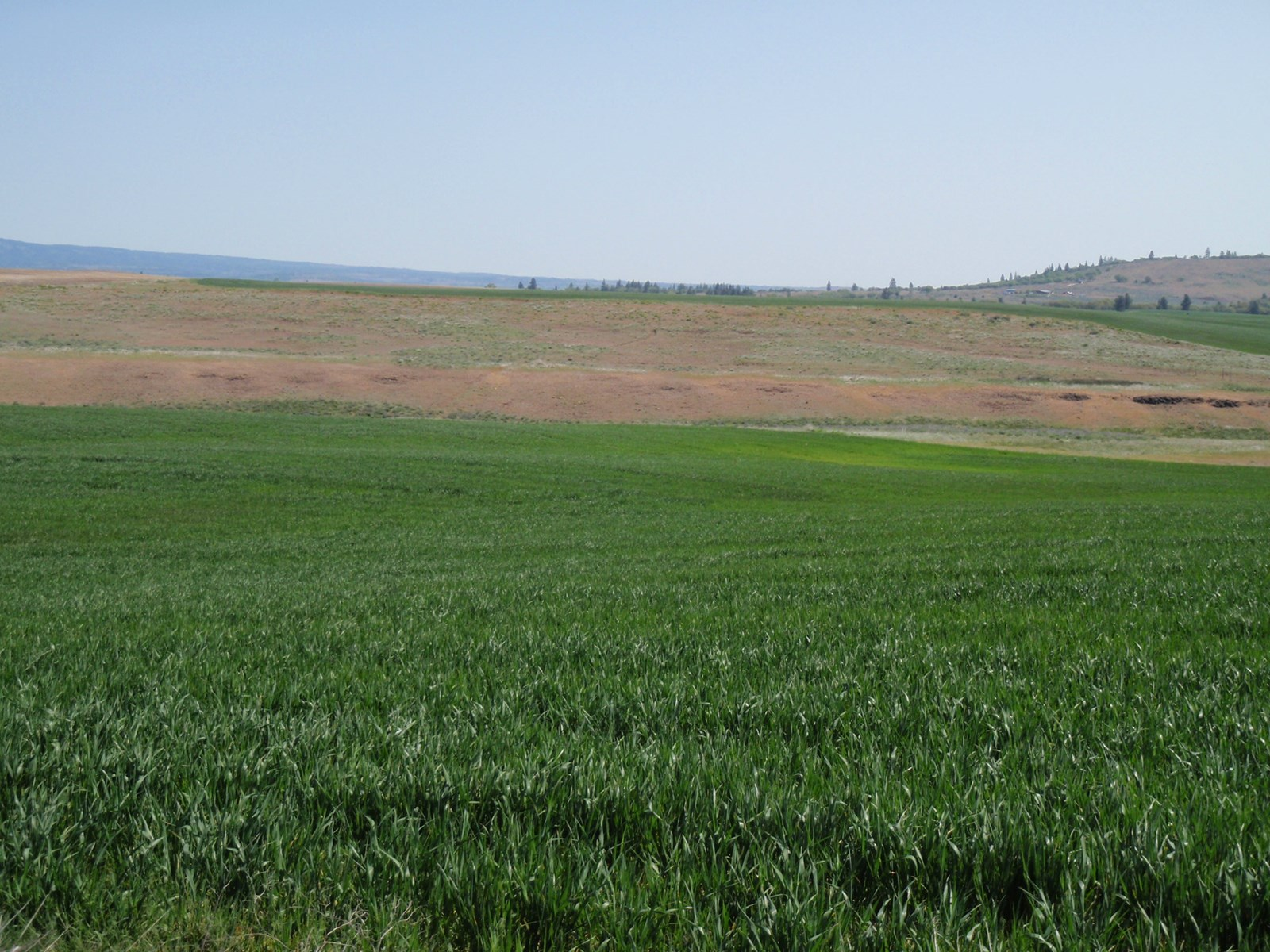 land for sale Goldendal wa