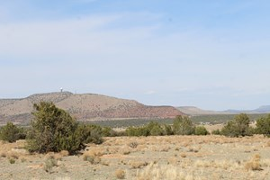 TWO ADJOINING PARCELS FOR SALE IN SELIGMAN AZ