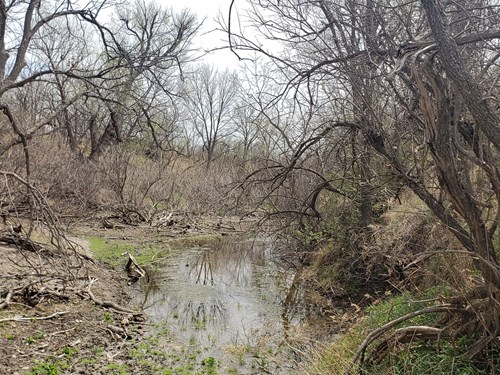 Irion county, Texas Hunting and Cattle Ranch in Mertzon