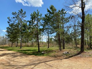 LAND WITH ACREAGE FOR SALE IN MOUNT. PLEASANT, TENNESSEE