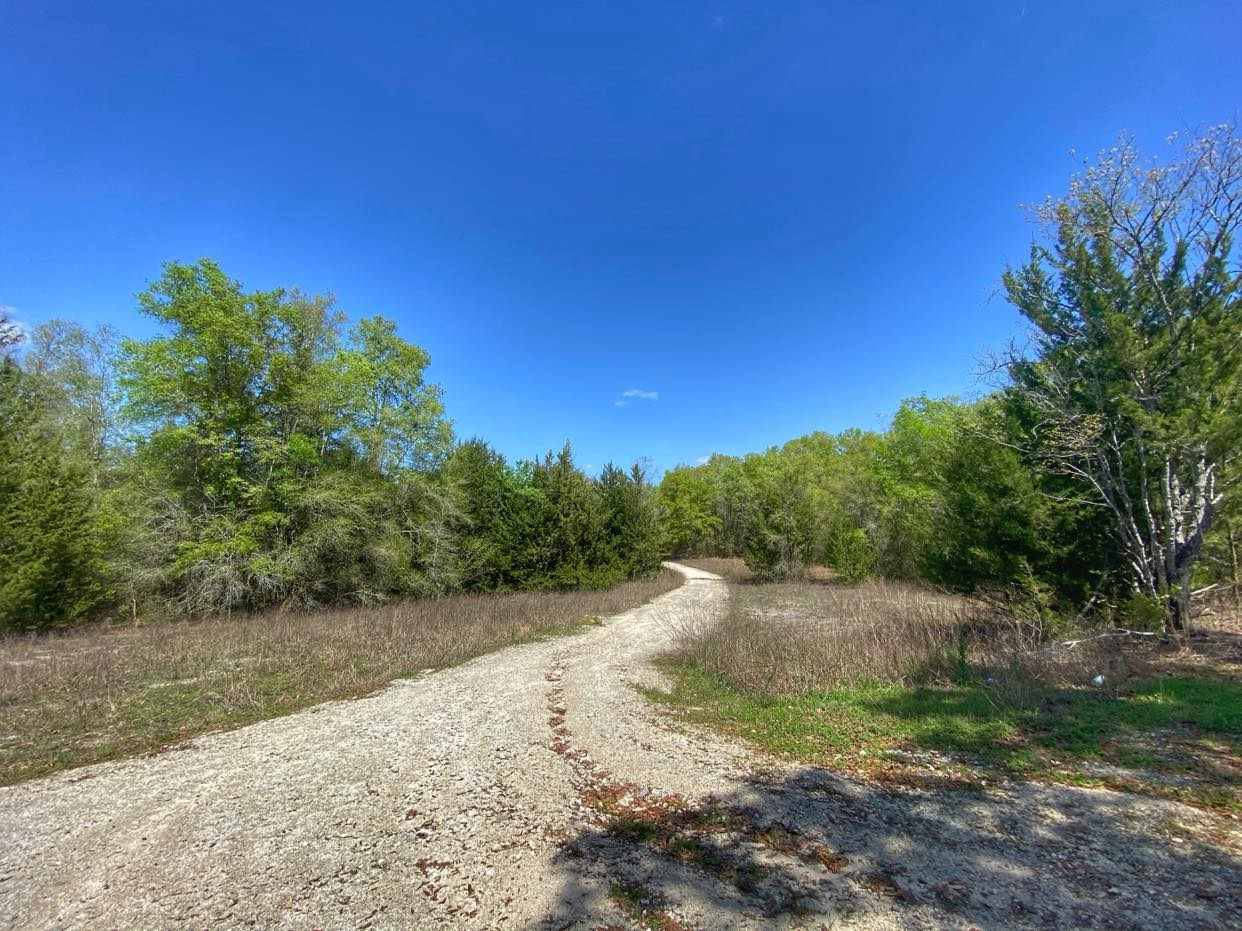 5 ACRES WAITING FOR YOUR DREAM HOME!