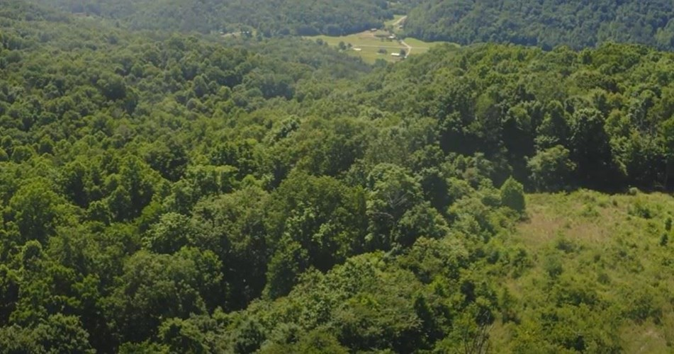 Tennessee & Virginia Hunting Paradise for Sale At Auction