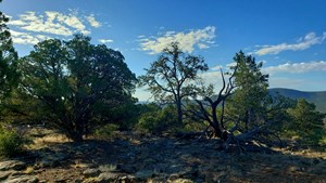 AWESOME VIEWS OVER 37 ACRES RECREATIONAL LAND