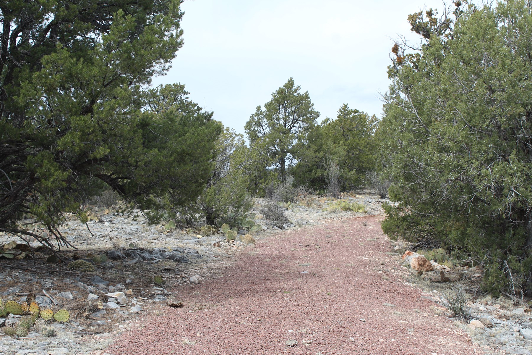 Scenic Mountain Acreage for Sale, Northern AZ