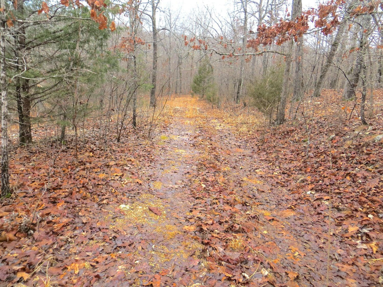 Lot for Sale in Mammoth Spring, Arkansas