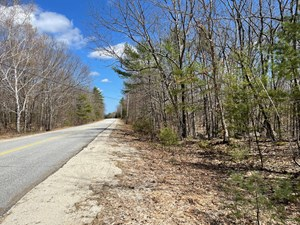 TIMBERLAND FOR SALE IN SOUTHERN MAINE