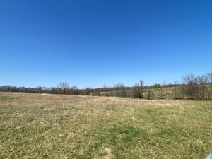 NW MO 30 ACRES FOR SALE...HUNTING, PASTURE, RECREATION