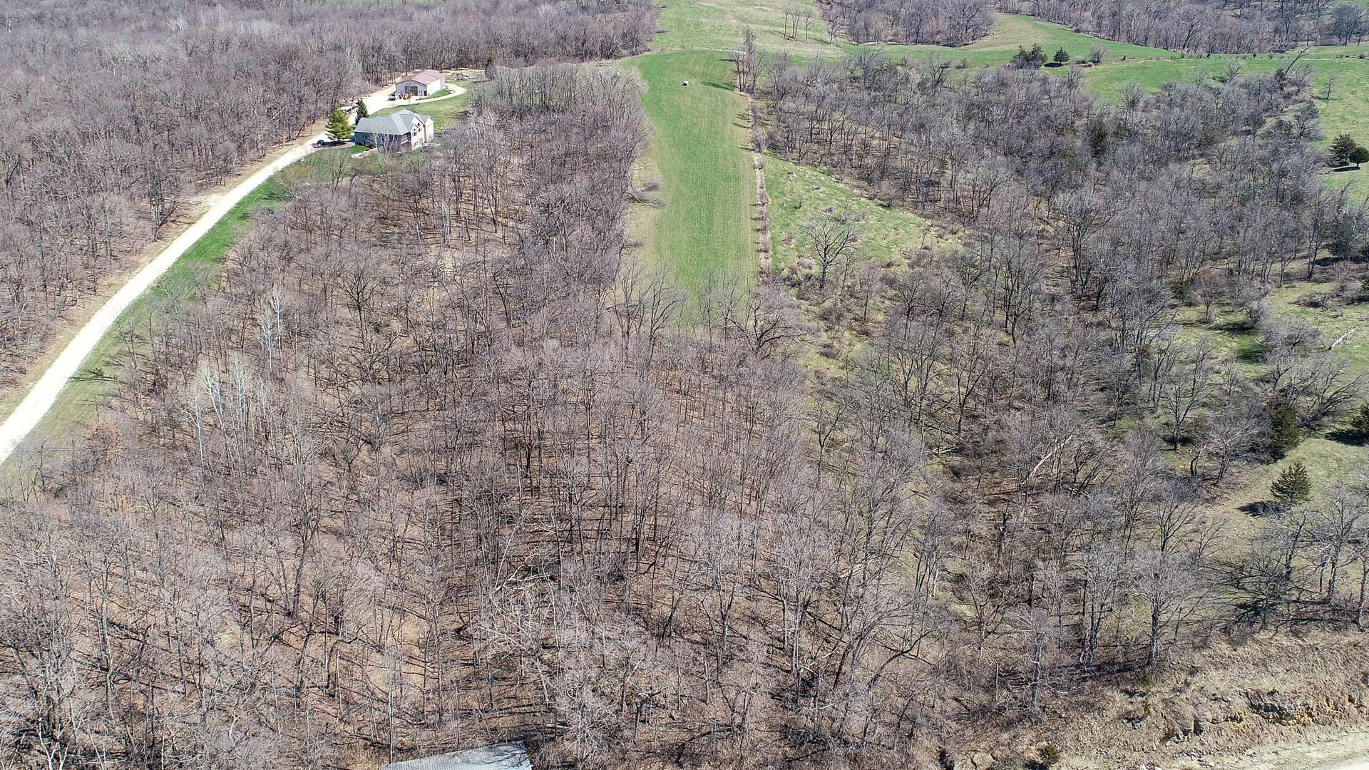 Buildable acreage for sale Jones County Iowa