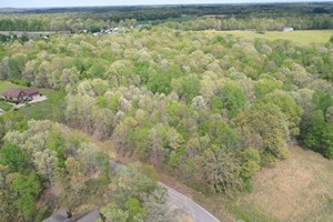 LAND FOR SALE IN UPSCALE RESORT IN TENNESSEE LORETTO TN$29,9