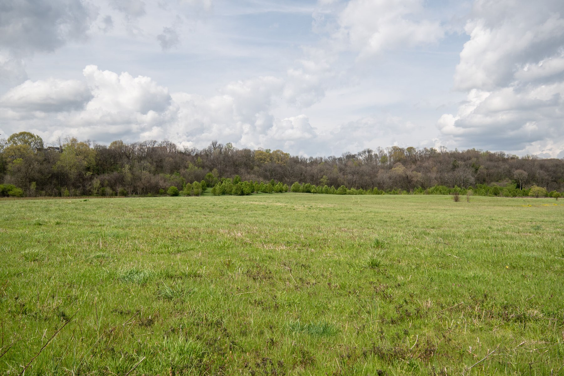 Acreage for Sale in Columbia, Maury County, Tennessee