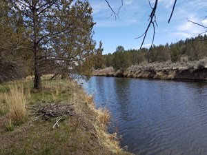 RIVERFRONT PROPERTY, WATER RIGHTS RURAL ACREAGE NORTHERN, CA