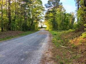 176 ACRES HUNTING LAND FOR SALE SCOTT COUNTY, MS