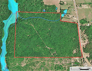 TX HUNTING & RECREATIONAL LAND FOR SALE NEAR HAWKINS WOOD CO