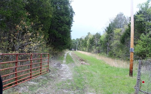Wooded Acreage with Road Access and Total Privacy