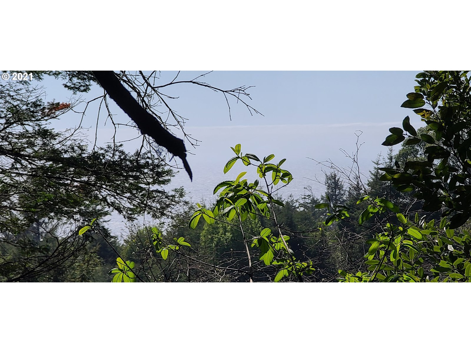 8.4 ACRES OF RAW LAND FOR SALE WITH MOUNTAIN AND OCEAN VIEWS