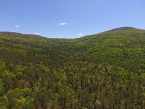 280 ACRE SUGAR LOAF MOUNTAIN RECREATIONAL PROPERTY
