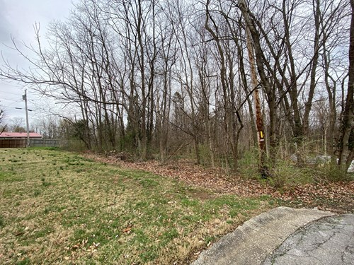 12.9 acre subdivision lot for sale in Glasgow, Ky.