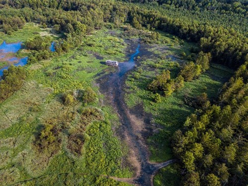 West TN Duck Hunting Hole 4 Sale - Recreational Hunting Land