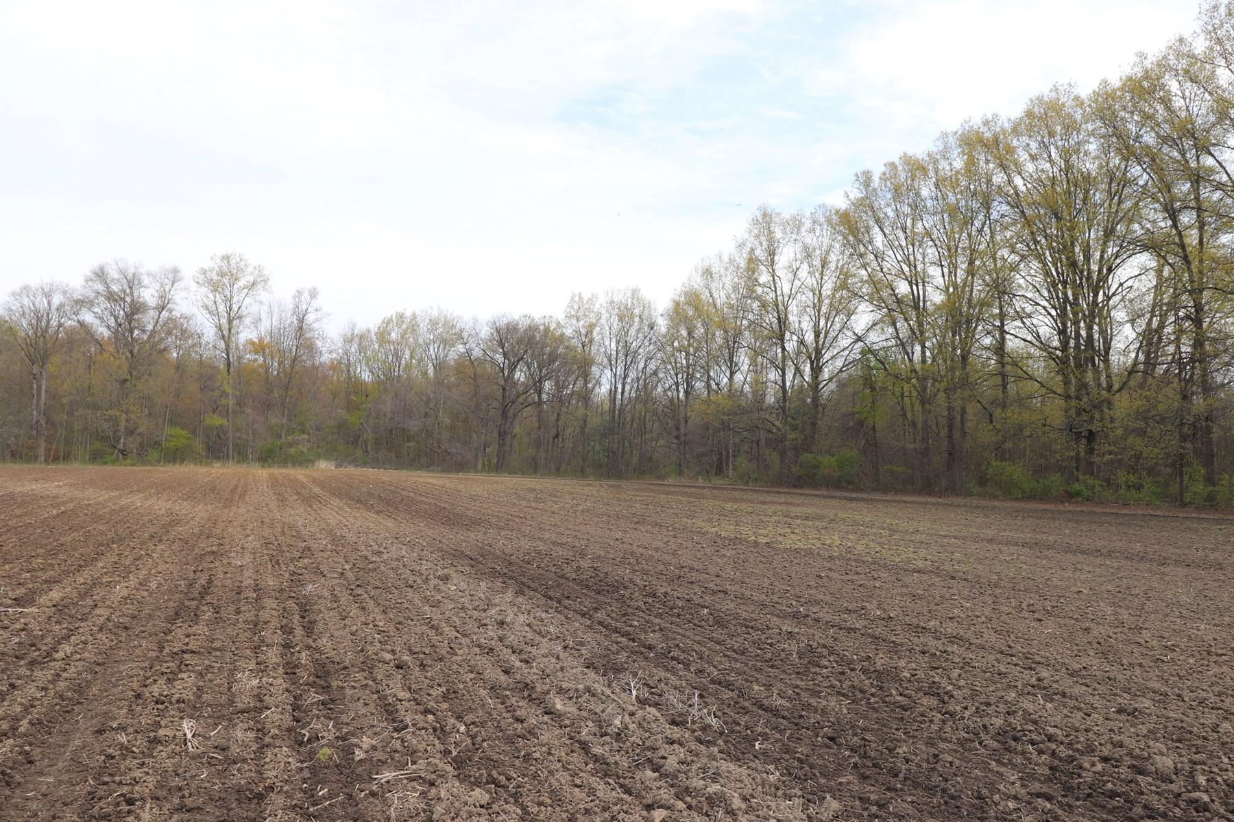 Building Lot, Sunbury Ohio, Delaware County, Buckeye Valley