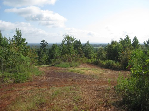 East Texas Hunting/Recreational/Land For Sale