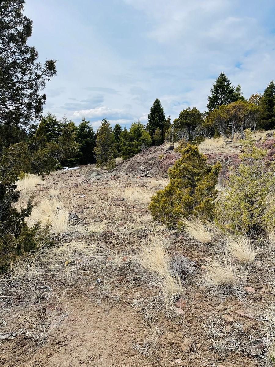 Montana Acreage For Sale, Mountain Property Build Site