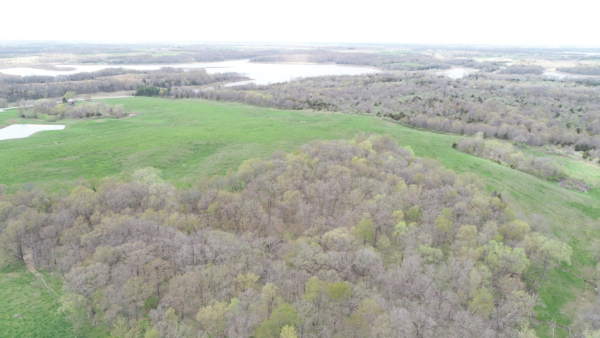 Appanoose County Pasture & Recreational Land for Sale