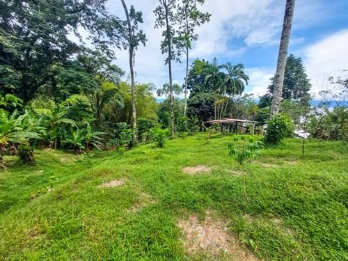 Affordable Waterfront Land, Punta Laurel, Isla Popa