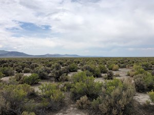 NEVADA RECREATIONAL RANCH HUNTING LAND WASHOE CO FOR SALE