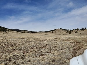 LAND FOR SALE, PARK COUNTY, CO NEAR 11 MILE RESERVOIR