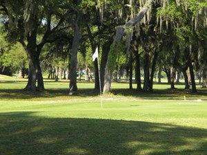 GOLF COURSE LOT NW 92 COURT CHIEFLAND FL 32626