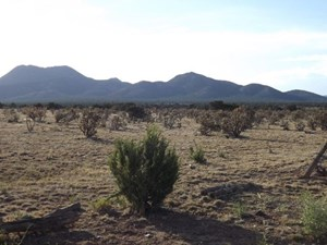NEW MEXICO GRAZING & RESIDENTIAL LAND FOR SALE SANTA FE CO
