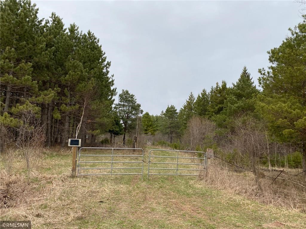 80 Wooded Acres For Sale North of Askov MN