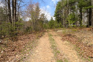EXCELLENT RECREATIONAL PROPERTY FOR SALE IN RINER VA