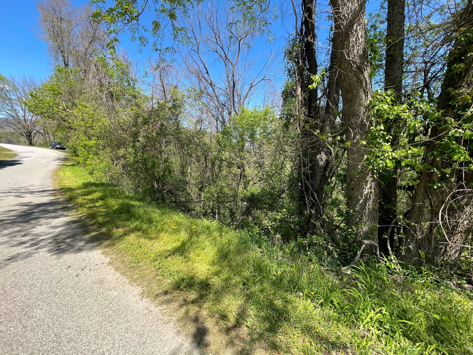 Wooded Lot for Sale in Giles County VA