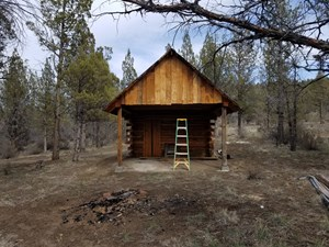 CABIN IN THE WOODS/SEPTIC TANK/BORDERS BLM/ 3 +/- ACRES