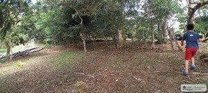 LAND FOR SALE IN EL VALLE DE ANTON COCLE PANAMA
