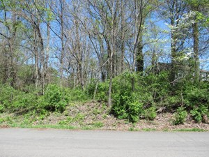 WOODED BUILDING LOT FOR SALE IN BRISTOL VA