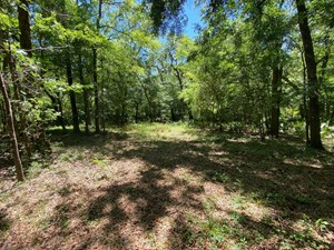 BEAUTIFUL 1.9 AC RIVER LOT WITH WELL, SEPTIC, POWER $100K