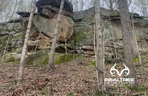 VINTON COUNTY OHIO HUNTING LAND FOR SALE